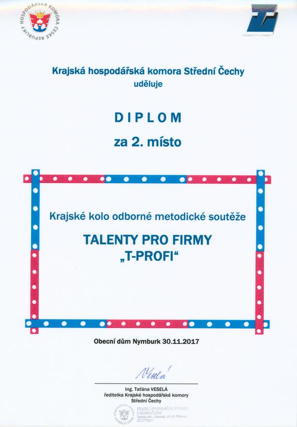 Diplom T_profi