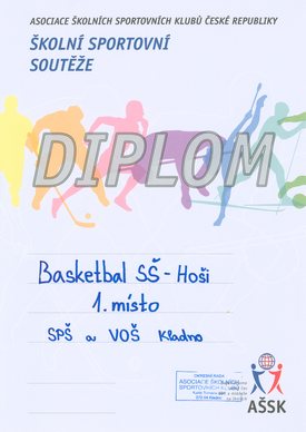 Diplom basket