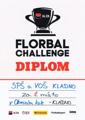 Diplom florbal 2019